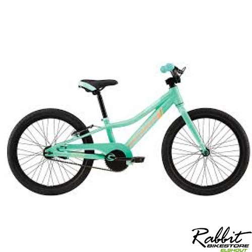 Cannondale Trail 20 Single Speed Girl, TRO